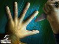 5 Finger Fillet