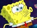 Sponge-Bob-Squarepants